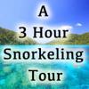 A 3 Hour Snorkeling Tour
