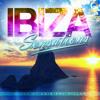 Ibiza Sensations 93 (HQ) by Luis del Villar