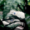 Benjamin Diamond - Assassin Assassine (Synapson Remix)