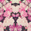 Shelhiel X Aaron Jiam - Your Love Is Beautiful