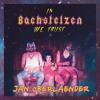 Jan Oberlaender At  |  In Bachstelzen We Trust  |  Salon Zur Wilden Renate |