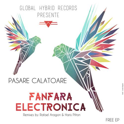 Pasare Calatoare - Fanfara Electronica (Haris Pilton Remix)