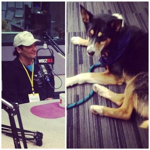 Most traveled dog in sled dog history, Walter Payton, in studio
