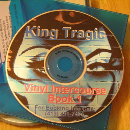 VINYL INTERCOURSE BOOK 1