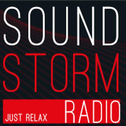 Paul Miller Vs Sajjad Ravjani - Digital War (soundstorm-radio.com CHILL MIX)