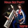 Ninja Sex Party - If We Were Gay.mp3