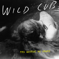 CHVRCHES The Mother We Share (Wild Cub Cover) Artwork