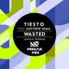 Tiesto ft. Mathew Koma - Wasted (Preak Bootleg)