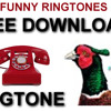 Pheasant Call Rngtone FREE to download and use on your PHONE