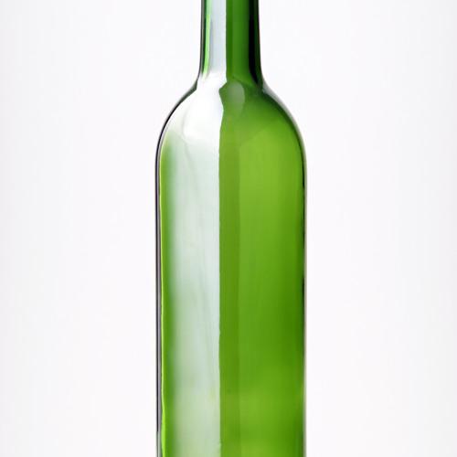 Bottle Song (Cover)