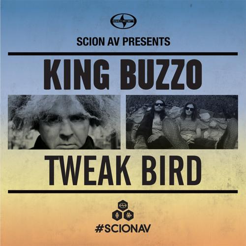 King Buzzo - The Hesitation Twist
