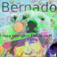 I Mag Ned Gern Eisbar Sein