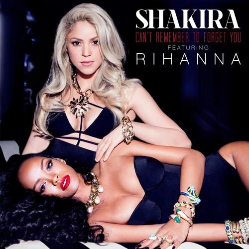 Shakira ft. Rihanna - Can't Remember To Forget You (Sebastian Wibe Remix)