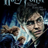 Harry Potter and the Deathly Hallows Part 1 - Obliviate Cover (full orchestra)