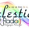 Homenaje A Las Madres Celestial Radio Editado Portada del disco