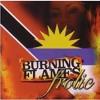 Daftar Lagu I'm On Fire - Burning Flames / featuring Ebony, Skeechy Dan, Baja Jedd mp3 (3.43 MB) on topalbums