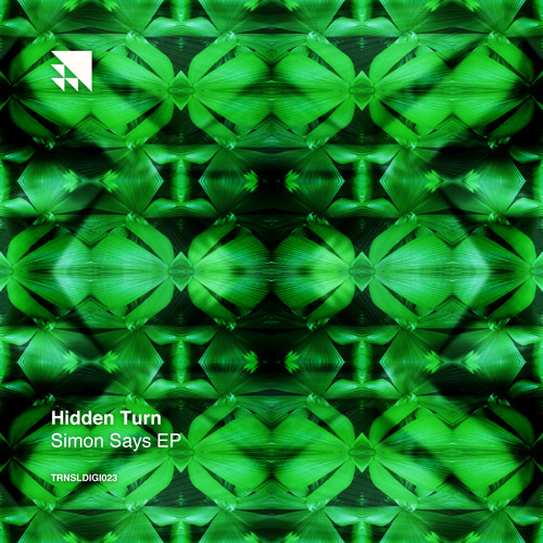 Hidden Turn - What's Going On?