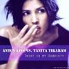 Anton Liss vs. Tanita Tikaram - Twist In My Sobriety [2014] OUT NOW!!!