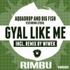 Aquadrop & Big Fish ft Stush - Gyal Like Me (Wiwek Remix) OUT NOW