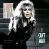 Stevie Nicks - I Can't Wait [Instrumental]