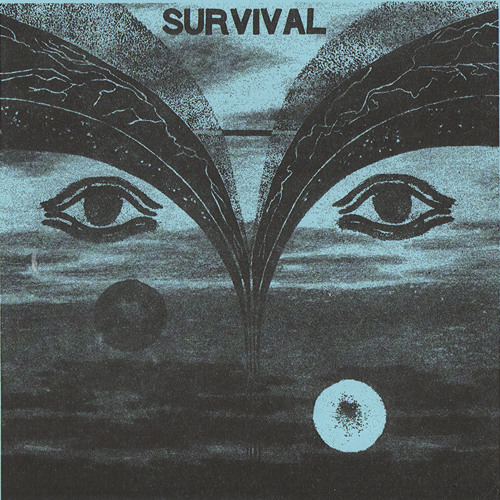 Survival- Civil War
