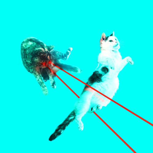 Posij - Lasercat (Out Now)