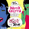 David Guetta- Shot Me Down (Norman & Freestyle Maniacs HardFloor Remix )