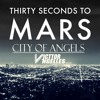 30 Seconds to Mars -City Of Angels (Victtor Angelles Remix)