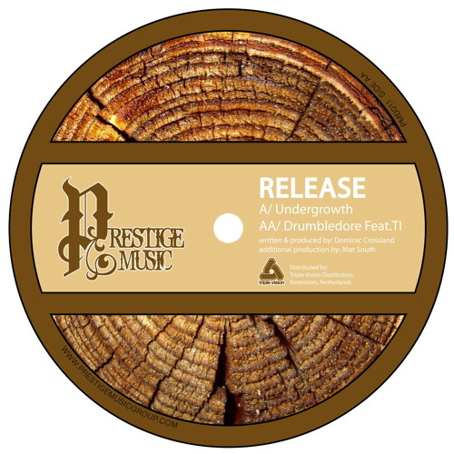 Release & T>I - Drumbledore - PMD011B