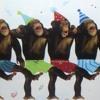 Monkey Dance by SambaYoro Ft Bai Babu