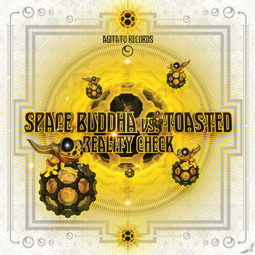 Space Buddha vs. Toasted - Reality Check (Preview) coming soon
