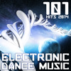 101 Electronic Dance Music Hits 2014: Album preview set - 101 tracks for $9.99