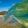 Avicii - Wake Me Up (Aloha Cover)
