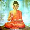 Buddha Songs | namo tassa bhagavato arahato samma sambuddhassa