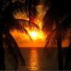 Lemonade ~ Danity Kane (feat. Tyga)