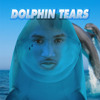 DIVE IN (DOLPHIN TEARS REMIX)