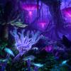 Xara - Pandora (radio edit)