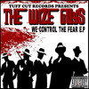 2. The Wize Guys - We Control The Fear ---->FREE DOWNLOAD