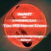Imany vs Syntheticsax - You Will Never Know (Ivan Spell & Daniel Magre Reboot)