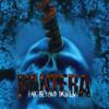 Pantera - 5 minutes alone (guitar cover)
