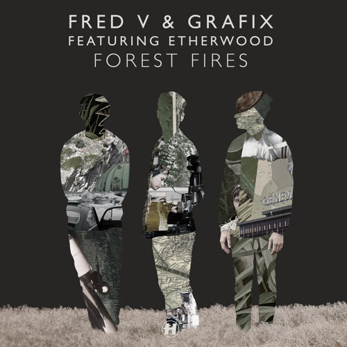 Forest Fires (feat. Etherwood) (Massappeals Remix)