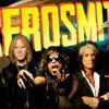 Mister Gorillass - Samples Aerosmith (Download)