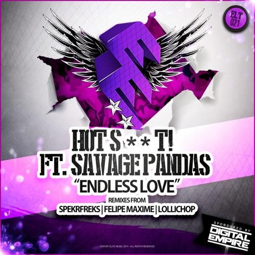 Hot Shit! - Endless Love ft. Savage Pandas (Felipe Maxime Remix)
