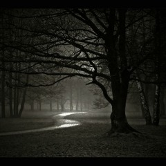 One acquainted with the night (2007) for flute and piano