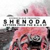 Shenoda - You Can Tell (clip)