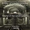 Arthur Sense - Entity of Underground #034: Sound of the Underground [May 2014] on Insomniafm.com