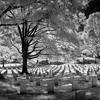 Sairi Muhammad - Di Pemakaman Itu mp3
