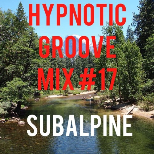 Hypnotic Groove Mix #17 - Subalpine