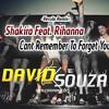 Shakira Feat. Rihanna - Cant Remember To Forget You (David Souza® Remix)