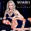 Shakira ft Rihanna - Can't Remember to forget you (cover by me)